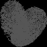 heartback